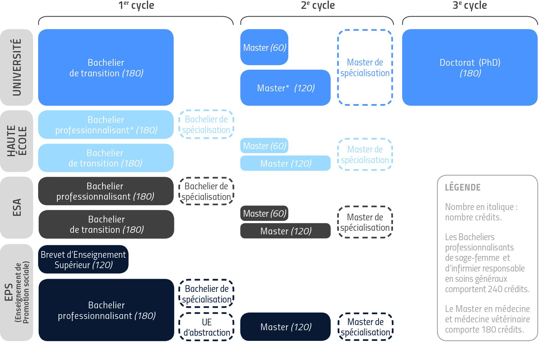 Schéma_structure études